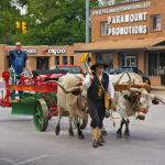 Restored Russell Standard Road Grader in 2014 Spring Picnic Parade Pulled by Oxen Driven by Michael Kubricht